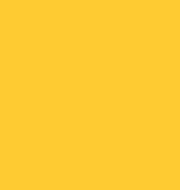 Salon Autokoulu Oy logo